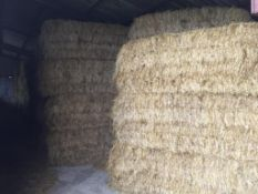 118 Euro Bales Only Rye Grass Hay in a barn Waresley Farms Ltd., Crooked Billet Farm, SG19 3BP