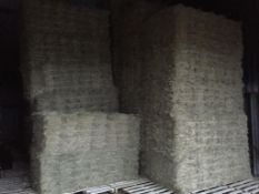 500 Flat 8 Bales only Meadow Hay in a barn in Barron 21 bale packs - 10t approx. Equifeedz Ltd., Old