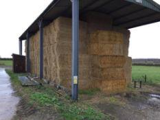 222 MF 2270 90x120x240 Bales Only Spring Barley Straw in a barn - 103t approx. Robert Lenton Ltd., C