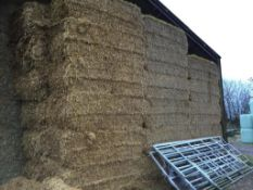 47 Krone HDP 4ft x 3ft Bales only Oat Straw in a barn P A Cade Contractors, Paddock Farm, PE19 5UW