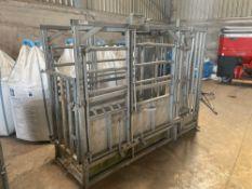 2004 IAE Centurion galvanised full access cattle crush. Serial No: 041791