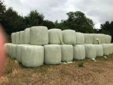 25 x Whole Crop Triticale Bales