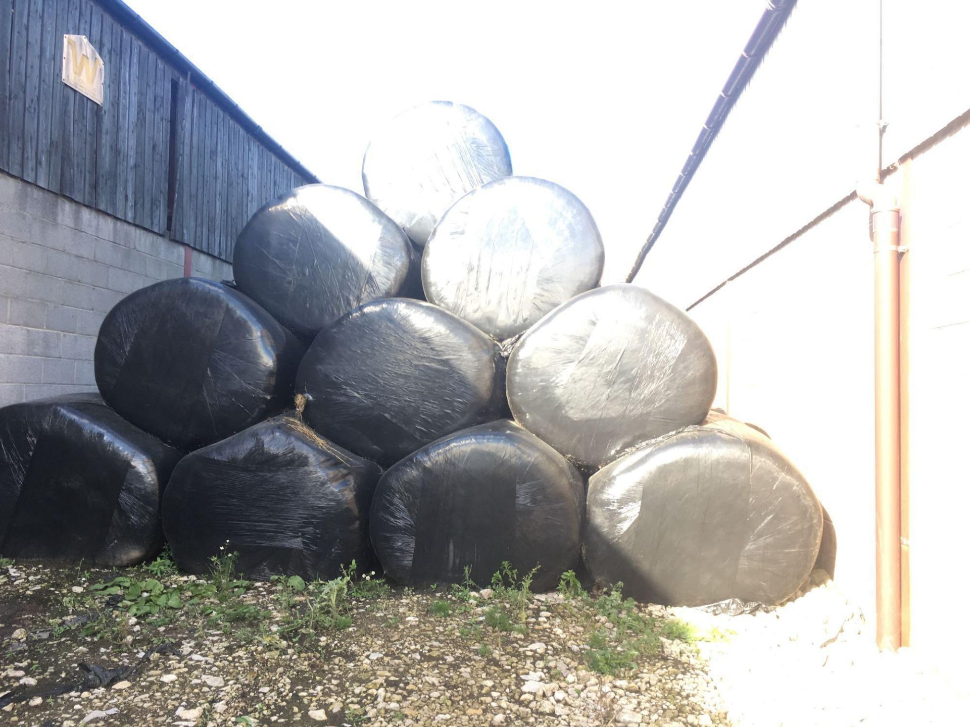 Qty of 2019 silage bales (circa 119 bales) - Image 3 of 4