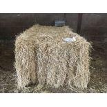 Qty of 2020 straw bales (circa 38 bales)