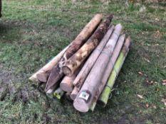 Quantity wooden fencing posts