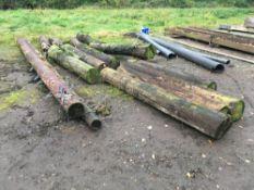 Quantity telegraph poles, sold in situ