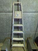 Wickesaluminum step ladder