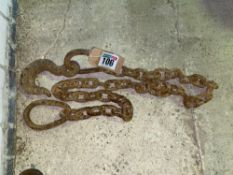 2.5m chain with hook