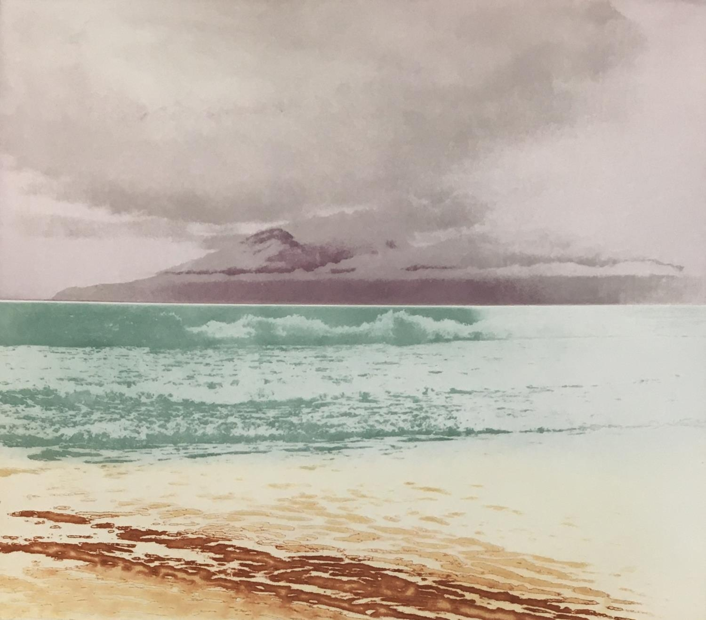 Donald Wilkinson (b.1937) Sound of Rhum/Storm approaching, Artist's Proof, 40cm x 47cm; Flowers