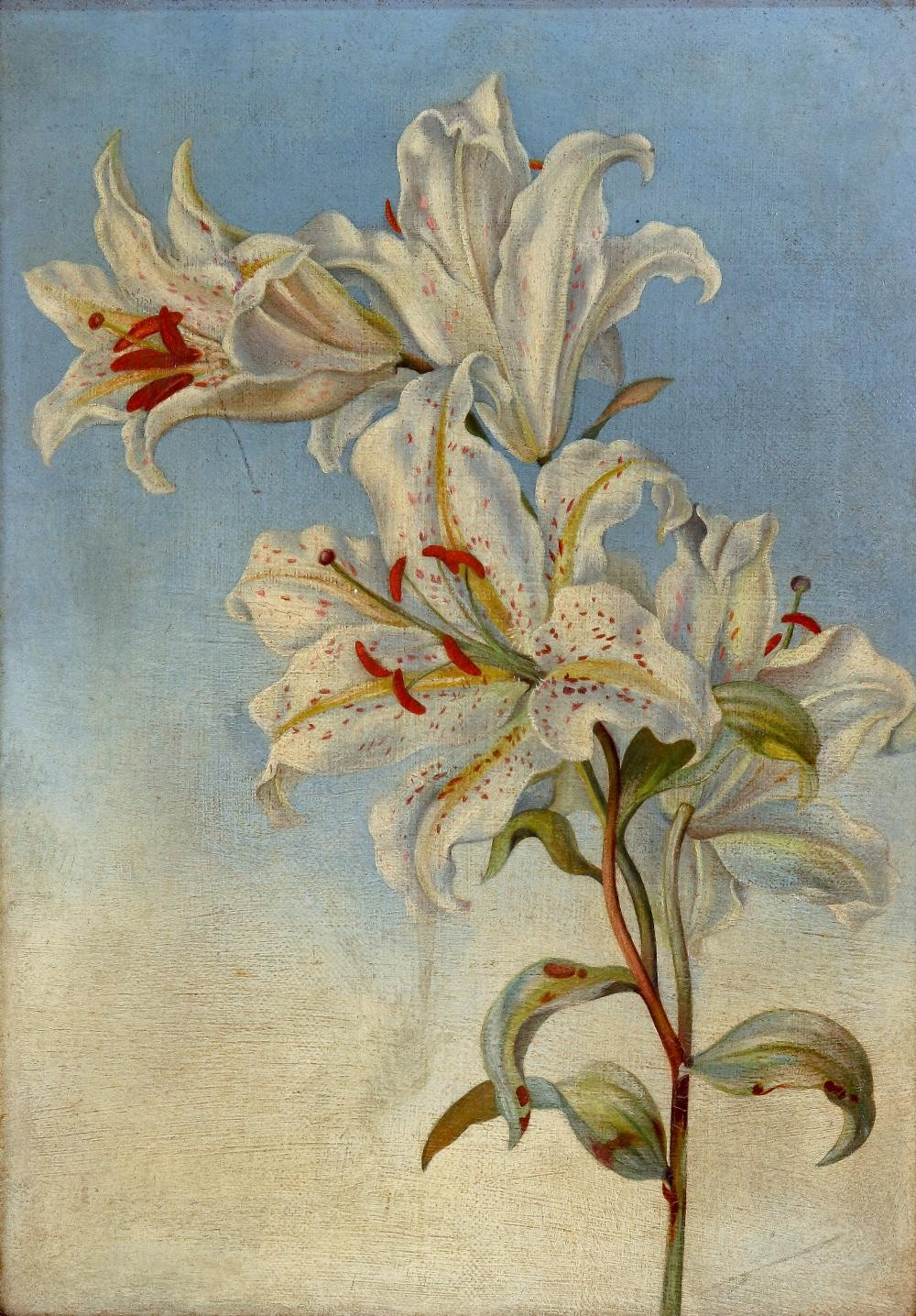 Alice Mary Mansford (British, 19th Century), Still life of lilies, inscribed 'Alice Mary Mansford