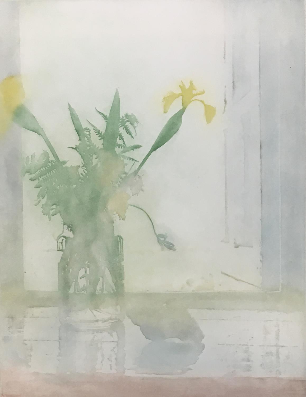 Donald Wilkinson (b.1937) Sound of Rhum/Storm approaching, Artist's Proof, 40cm x 47cm; Flowers - Image 4 of 6