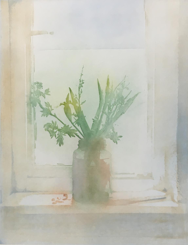 Donald Wilkinson (b.1937) Sound of Rhum/Storm approaching, Artist's Proof, 40cm x 47cm; Flowers - Image 6 of 6