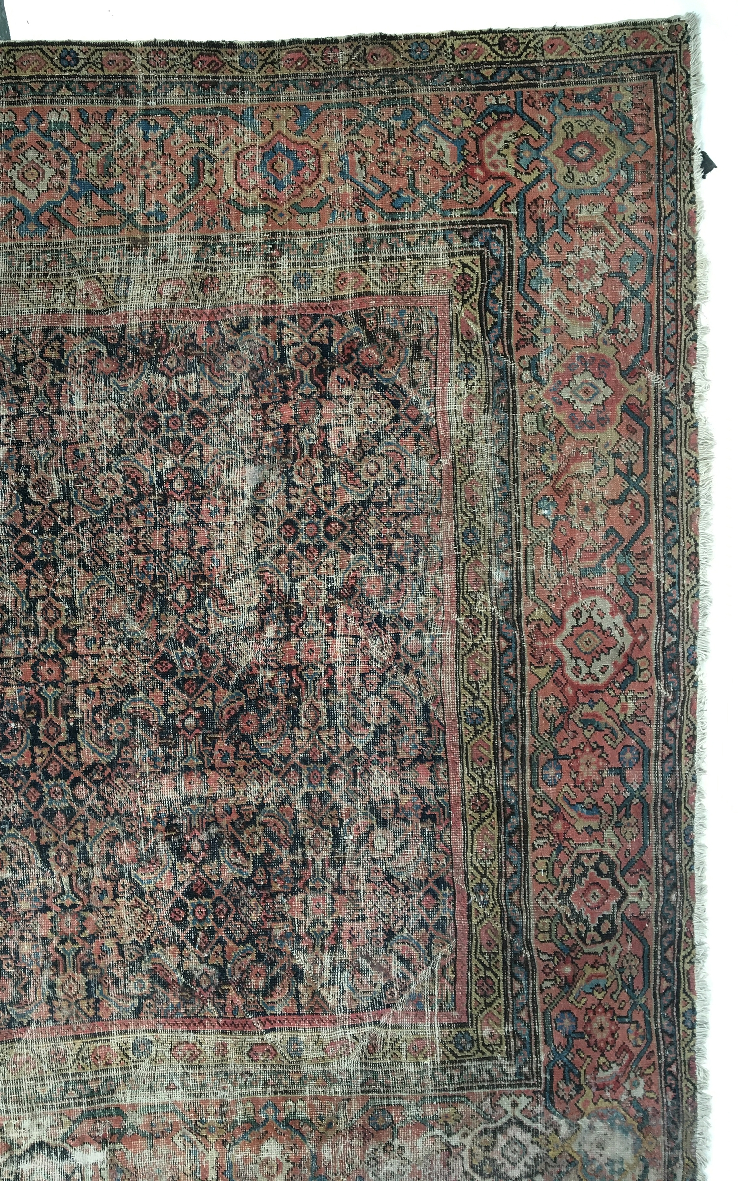 A large Ziegler mahal rug, 260x310cm - Image 2 of 2