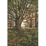 Graham Evernden, (British b.1947-) 'Sunlit Wood'; etching with aquatint printed in colours, signed