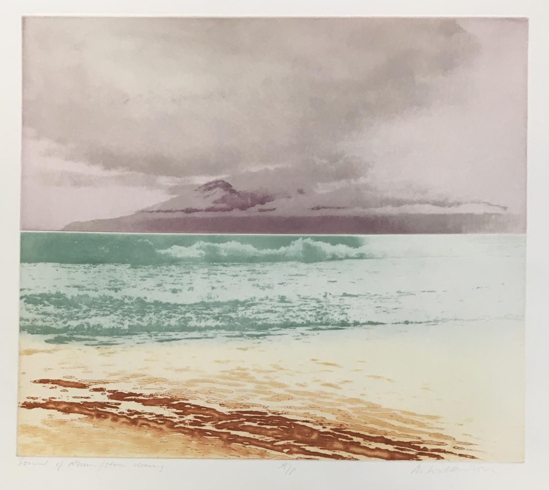 Donald Wilkinson (b.1937) Sound of Rhum/Storm approaching, Artist's Proof, 40cm x 47cm; Flowers - Image 2 of 6