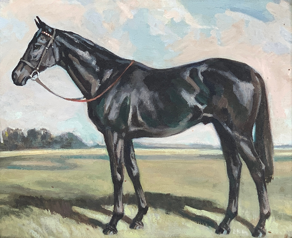 Joan Barrington. Study of a thoroughbred racehorse, oil on board, 36x43cm, in a gilt gesso frame