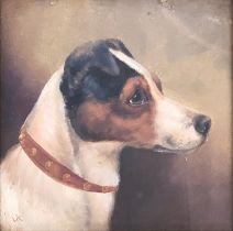 Edward Aistrop (British, fl.1880-1920) Jack Russell Terrier monogrammed 'AE', oil on board, 24 x