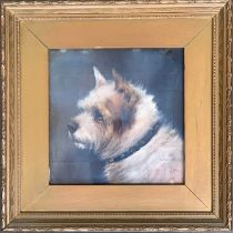 Edward Aistrop (British, fl.1880-1920) The Rough Coated Terrier (after Geo Armfield), oil on