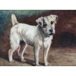 19th century British school, study of a terrier, oil on board, 33x44cm