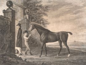 Racing interest: an early 19th century engraving of a racehorse by and after John Wessell, 'Eagle,