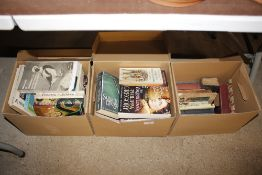 Three boxes of various books