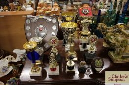 A quantity of various trophies to include snooker