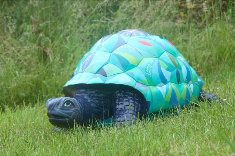Armour d'Amour - What The Tortoise taught us - Image 2 of 7