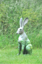 Hare Come Summer