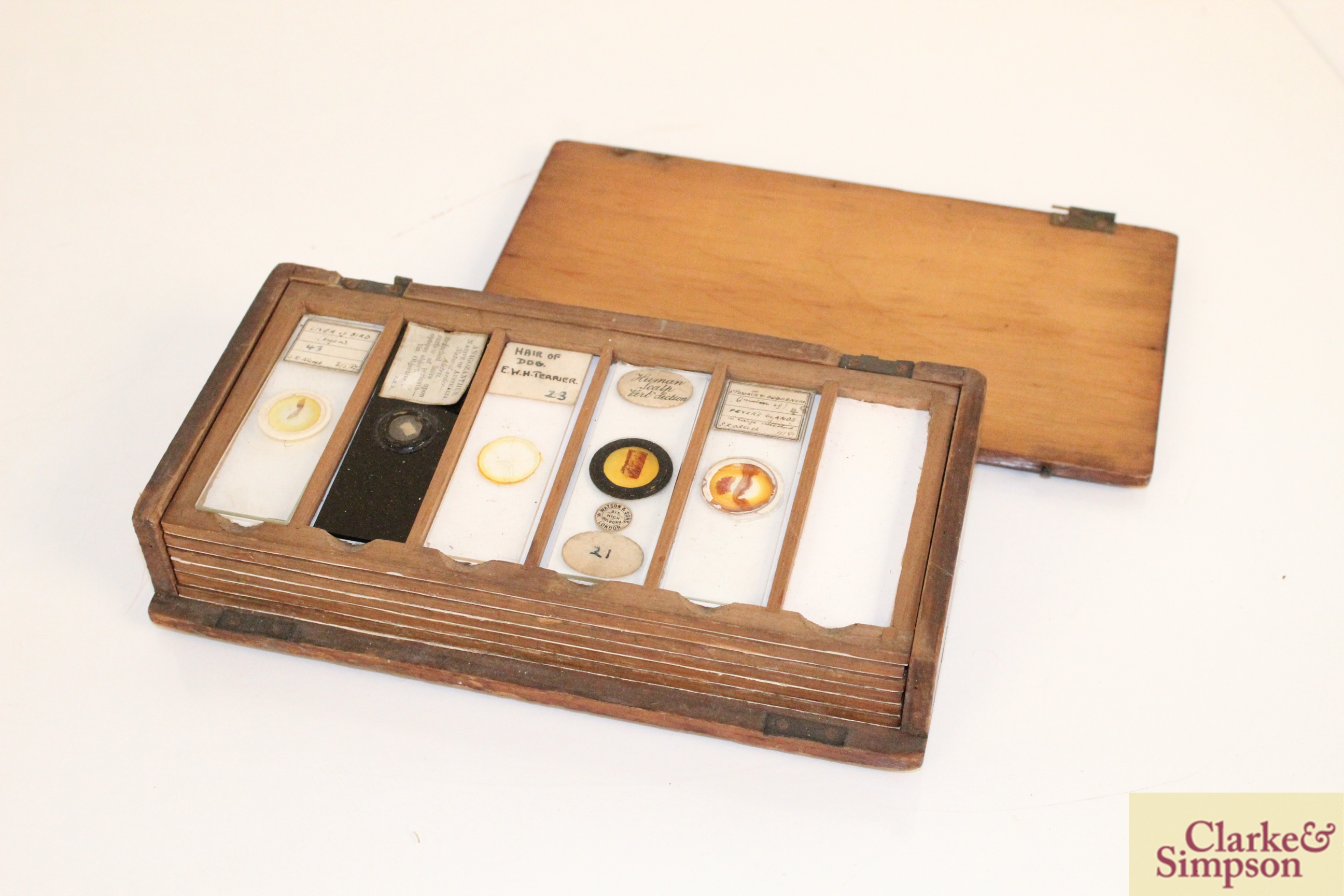 Three boxes of medical slides - Image 7 of 14