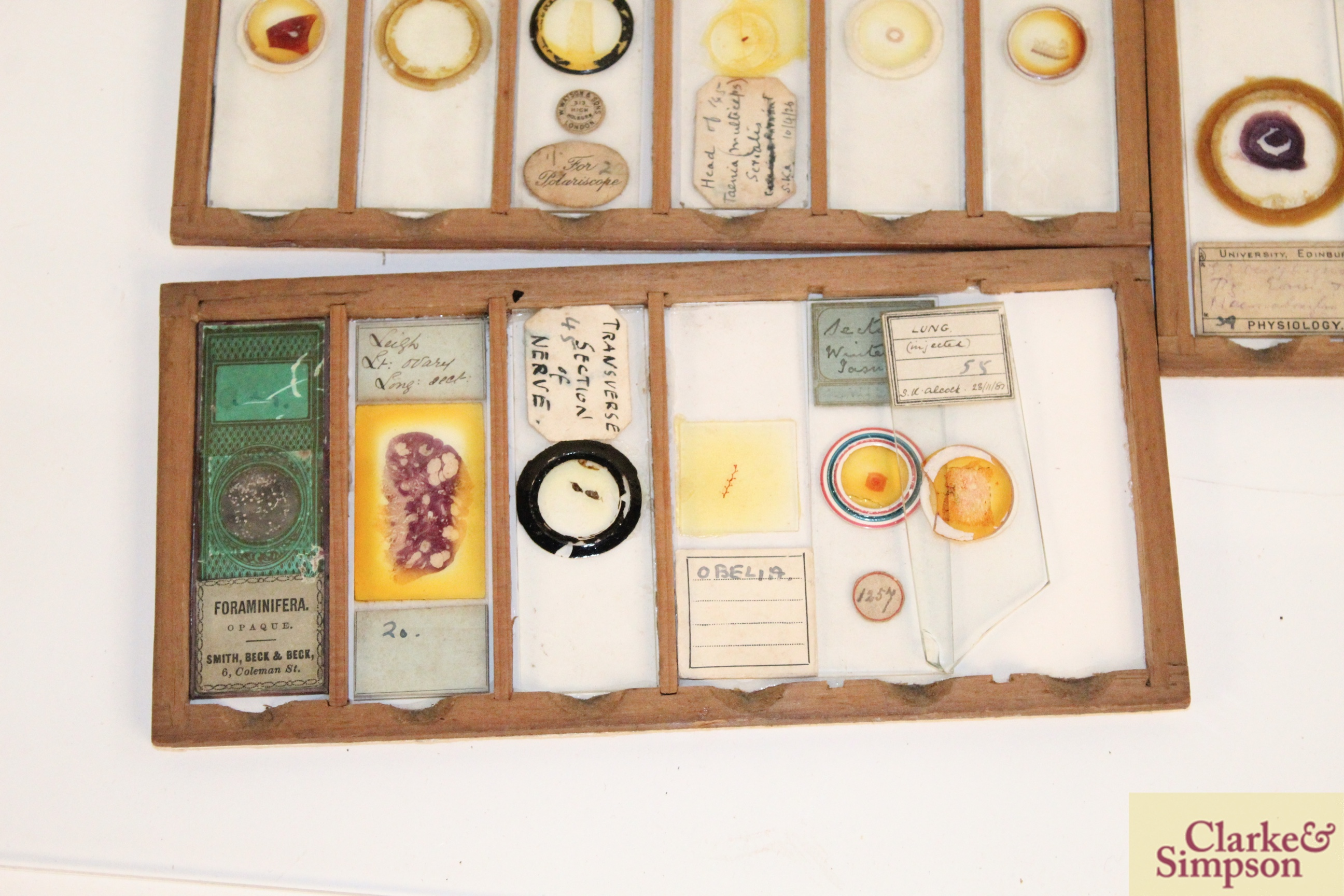 Three boxes of medical slides - Image 9 of 14