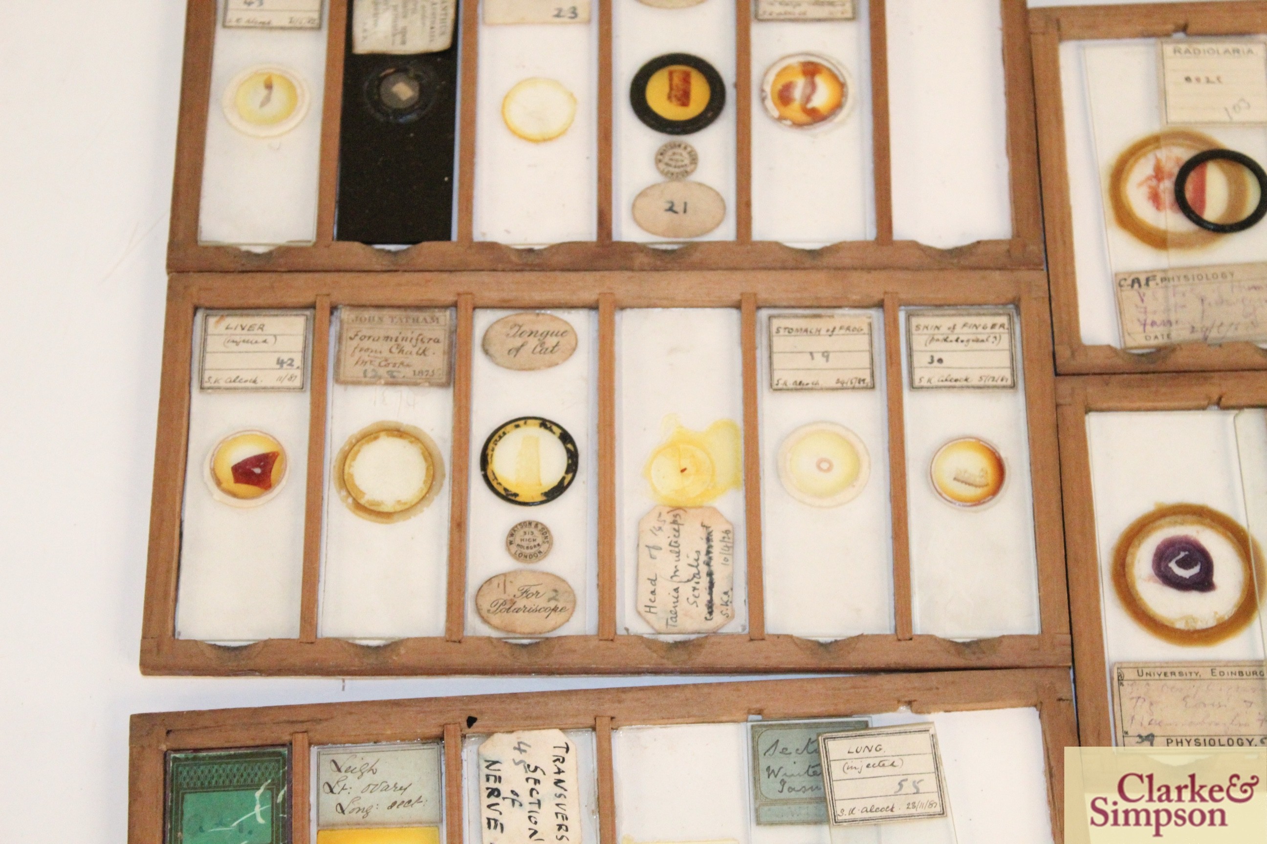 Three boxes of medical slides - Image 10 of 14