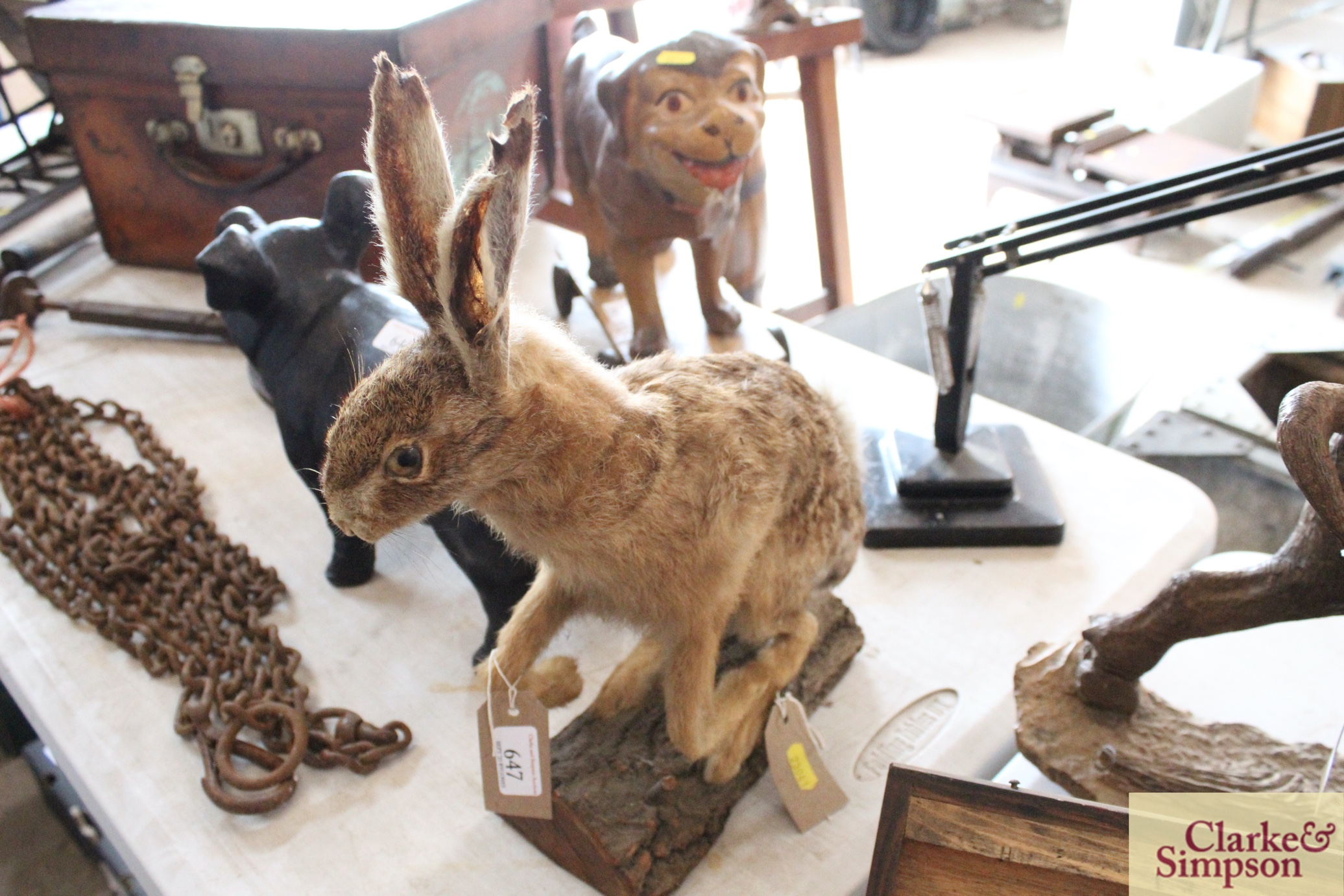 A taxidermy hare on a log - Image 2 of 8