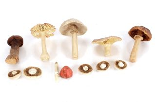 An interesting collection of variously sized ceramic mushroomornaments