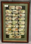 A framed set of 25 Mitchells cigarettes fishing cigarette cards 47 x 31cm