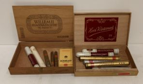 Two cigar boxes containing eight individual cigars in cylinders (3 Napoleon Coronas,