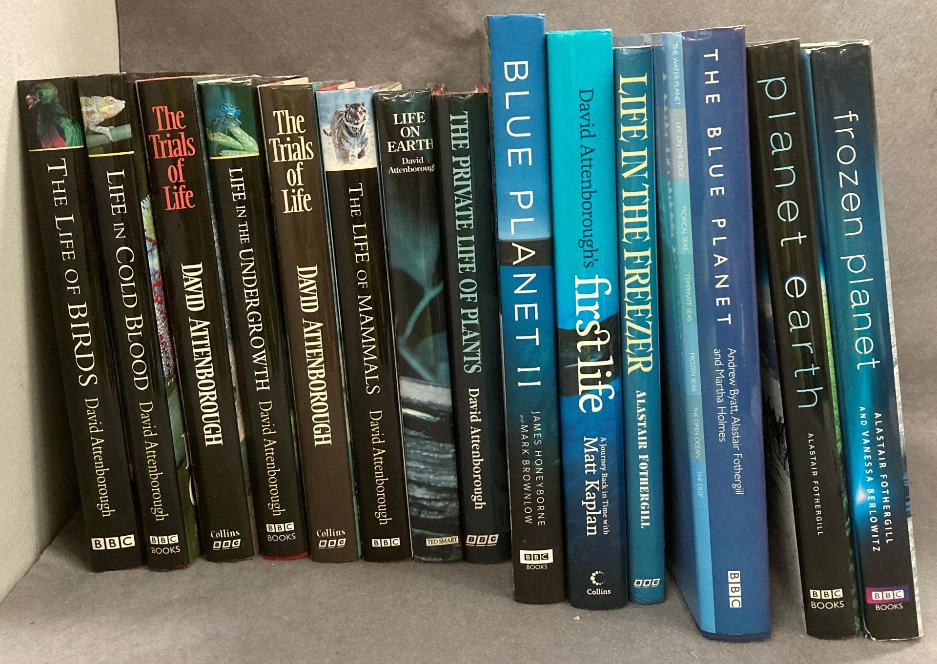 Contents to box fifteen mainly BBC books by David Attenborough and others 'The Life of Birds', - Image 2 of 3