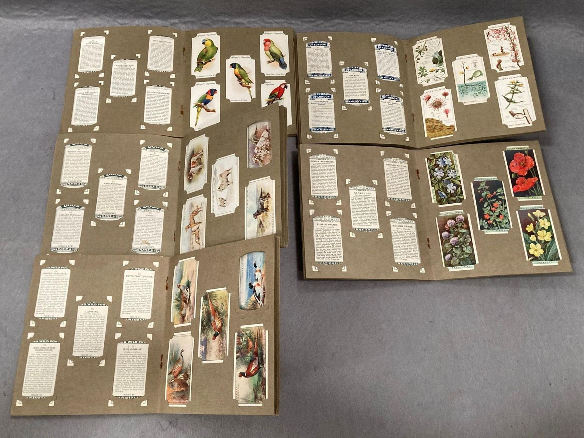 Eleven small Wills cigarette picture card albums containing Players 'Wild Birds', - Image 7 of 7