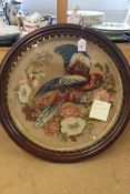 An unusual Victorian woolwork parrot in circular rosewood glazed frame,