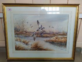 "Simon T Trinder watercolour ""Three Mallards"" in flight in autumnal river scene,"