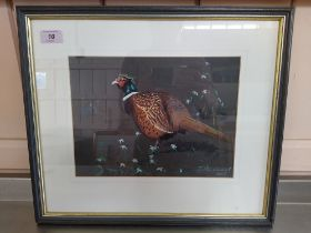 Julian Novorol (1949-) watercolour of a pheasant, signed bottom right hand side and dated 2005,