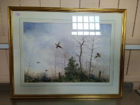 A framed unsigned watercolour of pheasants in flight in winter,
