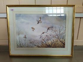 Simon T Trinder watercolour of a grey partridges in flight,