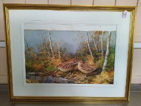 Neil Cox unglazed watercolour on paper of a pair of snipe amongst bracken,