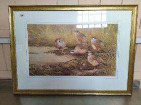Neil Cox (1955-) watercolour of partridge at a waterhole,