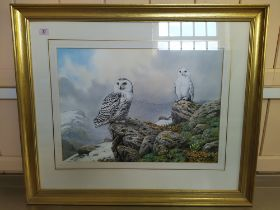 Carlo Donner (1957-) watercolour of a pair of snowy owls in mountainous landscape,