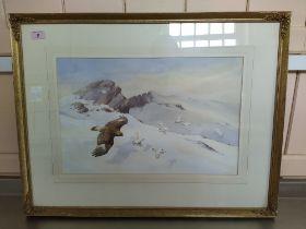 Neil Cox (1955-) watercolour of ptarmigans pursued by a hawk in a snowy mountain landscape,