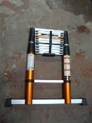 *Batavia Giraffe Air Ladder