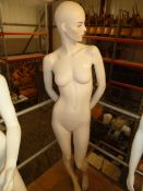 * female mannequin with glass base - nice features