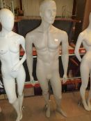 * male mannequin with glass base