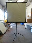 *ITM Projection Screen